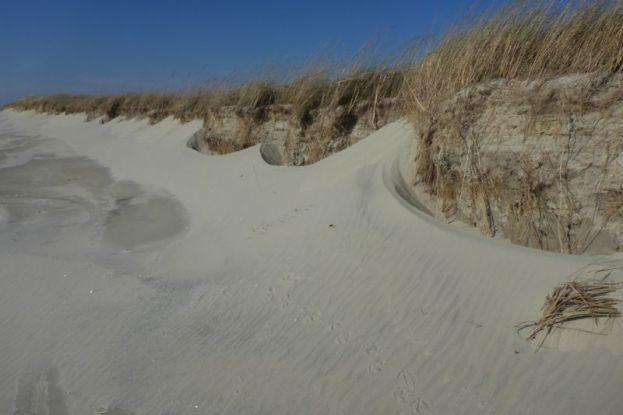 Sandverwehungen am Dünenfuß (Foto: Tore J. Mayland-Quellhorst).