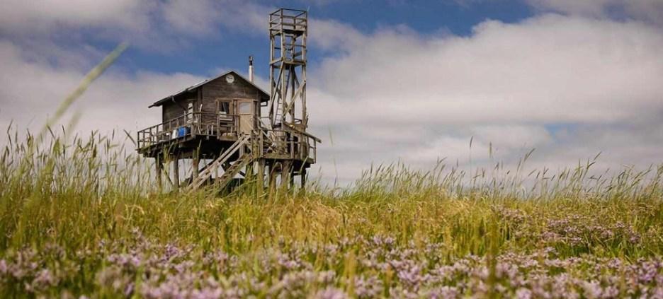 Vogelwärterhütte - Foto: B. Marten Philipps