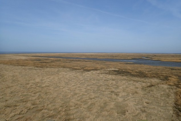 Blick von der Hütte nach Norden auf den Hafenpriel (Foto: Jonas Kotlarz)
