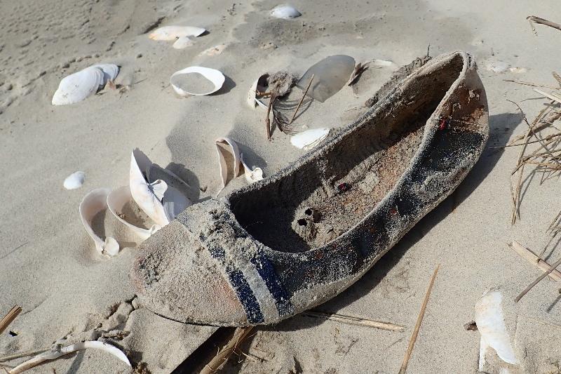 Angespülter Schuh von Seepocken (Balanus spec.) bewachsen (Foto: Jonas Kotlarz)