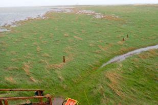 So beginnt der Mai mit einem Hochwasser (75 cm über MHW) und Sturmböen bis 10 Bft am 1. Mai 2018 (Foto: Jonas Kotlarz)