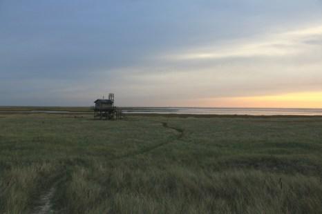 Trischen-Hütte im Morgenlicht (Foto: Jonas Kotlarz)