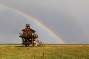 Regenbogen (Foto: Jonas Kotlarz)