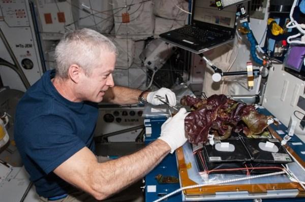 February 2015 – A Lab Aloft (International Space Station ...