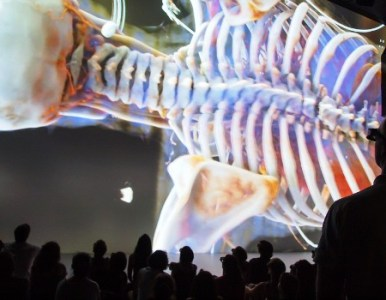 Ars Electronica 2016 – From space to brain (Deep Space In 8K)