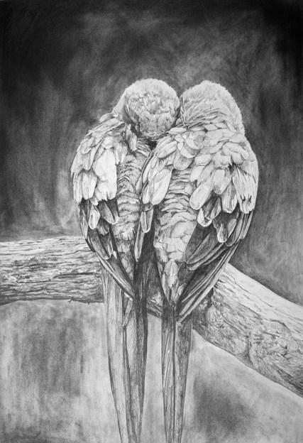 Nesting_drawing by Stacy Slaten