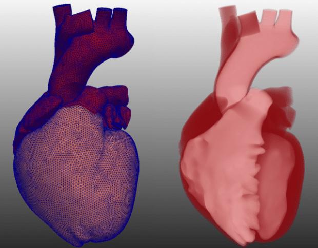 IndeX heart visualization