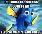 FAD (Fridge Amnesia Disorder)