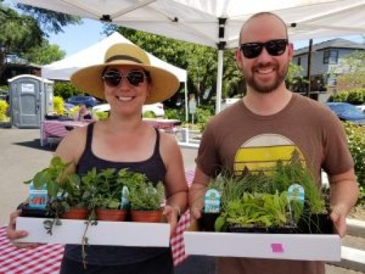 Two customers at the Incredible Edibles Plant Sale each holding a cardboard tray of vegetable and herb plant starts.