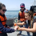Collecting data on the R/V Pacific Storm
