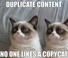 Duplicate Content No One Likes a Copycat