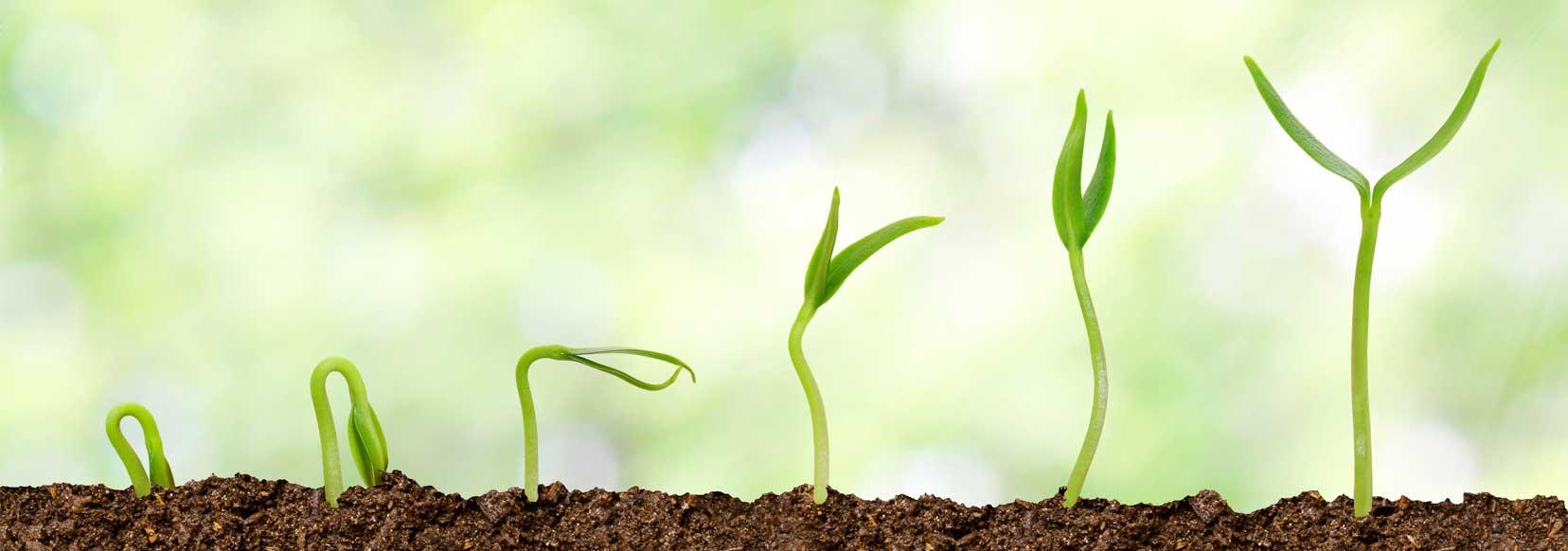 grow your website redesign metrics