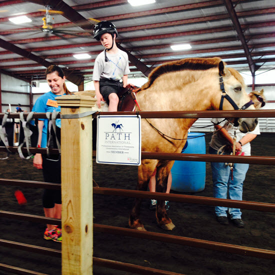 Gina Dust Equine Assisted Therapy