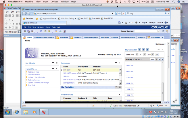 Siebel Web Client Interface