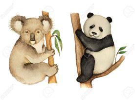 Watercolor Koala And Panda Sitting On The Tree.