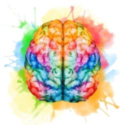 Watercolor of human brain