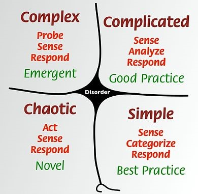 Cynefin framework quadrant for healthcare data