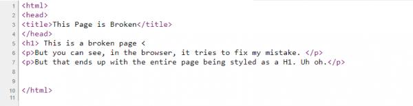 Page Source Screenshot