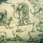 """""""Le renard, le singe and les animaux"""" (livre VI)."""
