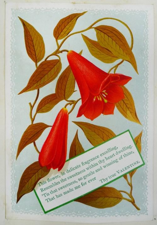 """Card at top of leaf [28], """"Dora Hollins 1878""""."""