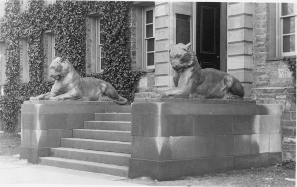 Tigers at Nassau Hall 1911 - AC111 Box MP71