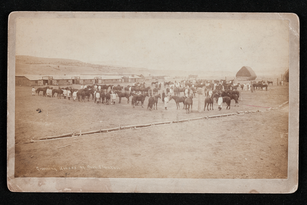 Grooming Horses at Fort Stanton