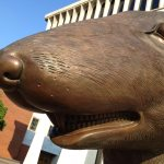 Close up of rat sculpture