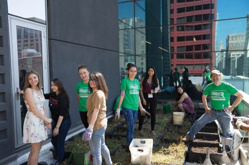 Service Day volunteers in the Wabash rooftop garden.