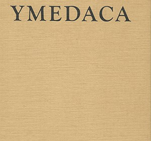 Front cover of YMEDACA by Hester Reeve (published with Yorkshire Sculpture Park)