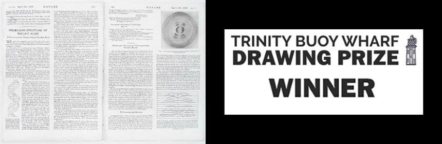 Composite banner image of Penny McCarthy's 'DNA in Nature' and the logo of the Trinity Buoy Wharf Prize logo