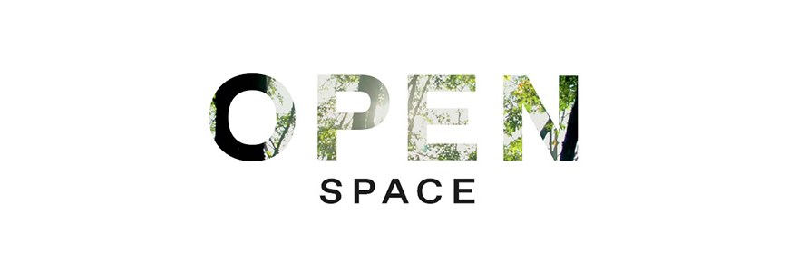Open Space exhibition in Venice featuring Paul Chamberlain