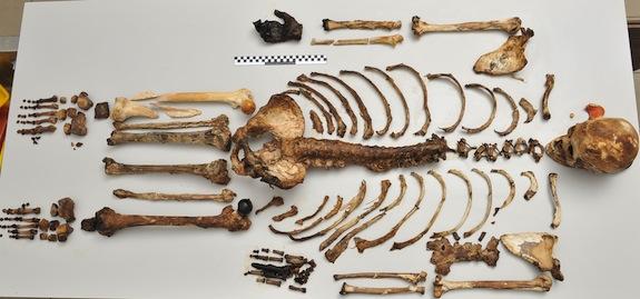 Ett typiskt skelettfynd