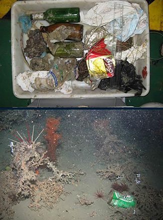 Examples of trash flound littering the ocean floor.