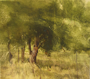 Image of Hillcrest Oak, a painting by Lane Hall