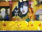 KISS the Ducks, image by Tom Glassman
