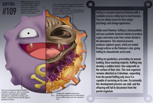 koffing_anatomy__pokedex_entry_by_christopher_stoll-dact6xs