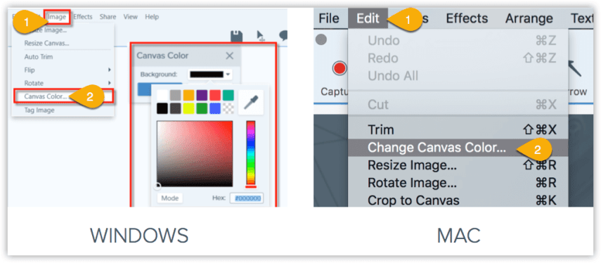 Change canvas color in Snagit
