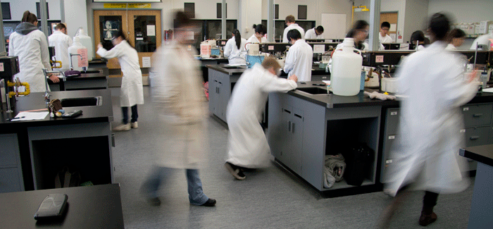 Lab with motion blur, both real and photoshopped