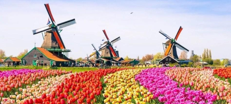 Fisioterapia trabajar y vivir en Holanda UCJC