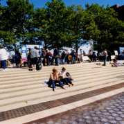 Color photograph of people looking at poster displays on the UMass Boston campus, with a few people sitting on steps in the foreground