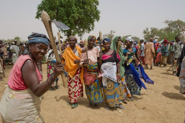 Check out this photo of women in the Sahel harvesting water to grow fruit trees.   Thanks to @WFP for posting this and more on their Twitter page.