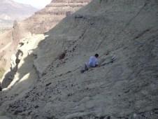 Volunteer Pat W. excavating a skull at Bone Creek