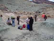 2014 Vert Paleo field trip to Foree with Dr. Joshua Samuels