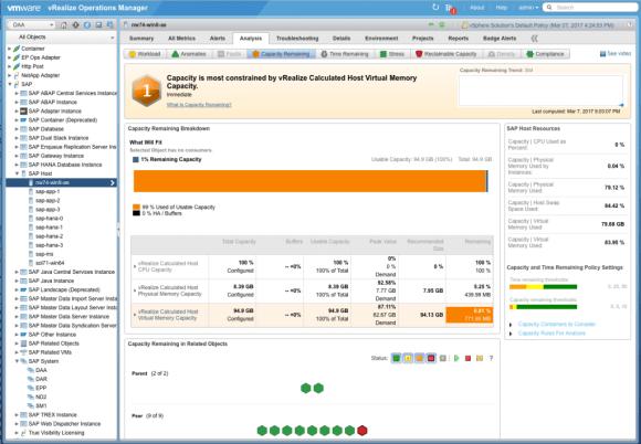 Capacity badge for SAP in Blue Medora's Management Pack
