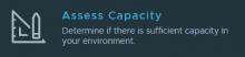 Assess Capacity