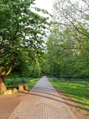 A week in the life of an SPS student - The beautiful green campus
