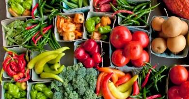 Ten Reasons for Choosing Organic Food and Ayurveda