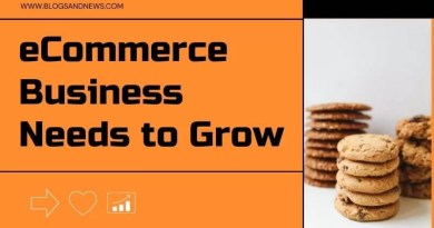 6 Things Your eCommerce Business Needs to Grow
