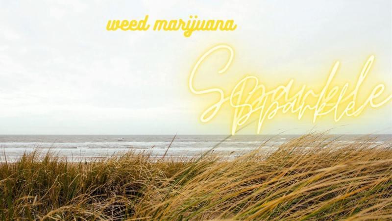 Buy best online weed marijuana in San Francisco