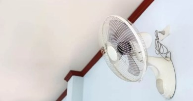 Build Quality, Oscillation and Speed: All Things About Wall Fans